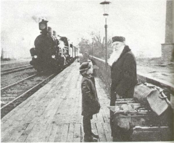 Лев Толстой (С. Герасимов)