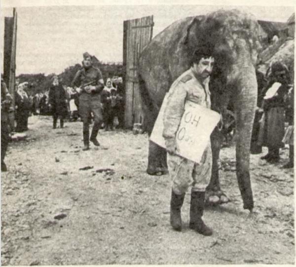 Арменака не поняли — он арестован за спекуляцию слоном