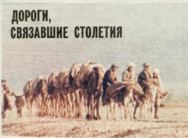Автомобили «не отменили» верблюжьих караванов